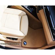 Коврики в авто BMW X5 E70